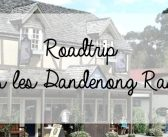 Roadtrip dans les Dandenong Ranges