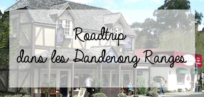 Roadtrip dans le Dandenong Ranges National Park, près de Melbourne, dans le Victoria, Australie