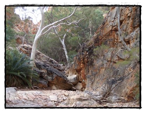 Héli Outback 2 030