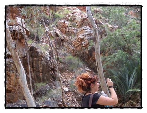 Héli Outback 2 031