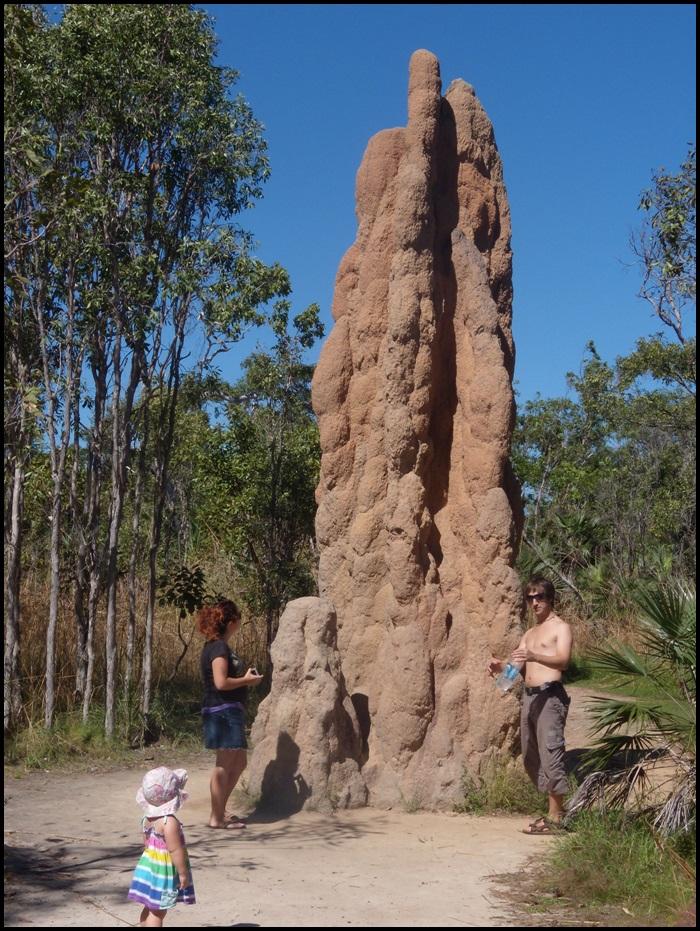Litchfield National Park, Australie, termitières géantes
