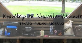 Nouvelle-Zélande: Tekapo, Pukaki, Moeraki