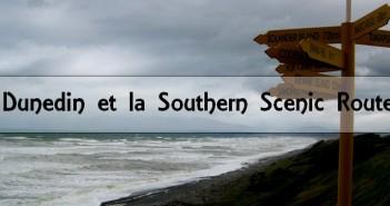 Nouvelle-Zélande : Southern Scenic Route