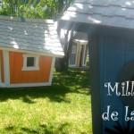 On a testé pour vous: le Parc Mille Lieux de la Colline, au Saguenay