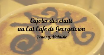 Cat Cafe, Georgetown, Penang, Malaisie