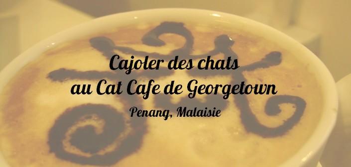 Cat Cafe, Georgetown, Penang, Malaisie