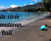 Un petit saut vers l'ouest de Bali: Pemuteran