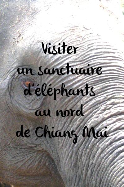 Sanctuaire d'éléphants Chiang Mai