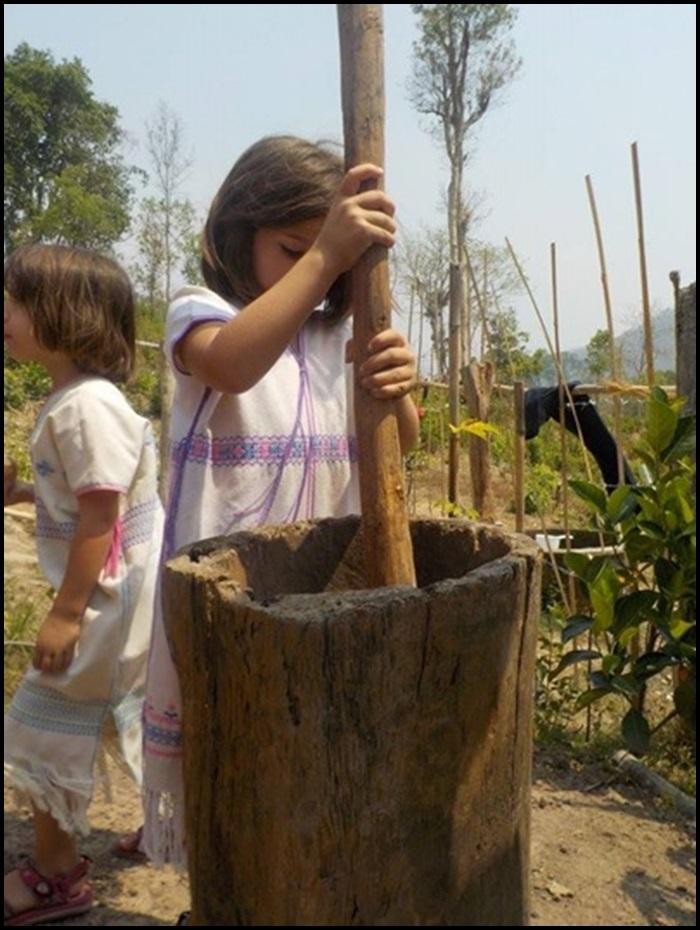 Nourrir un éléphant en Thaïlande