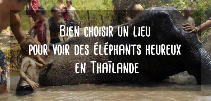 Comment choisir un lieu pour voir les éléphants en Thaïlande?