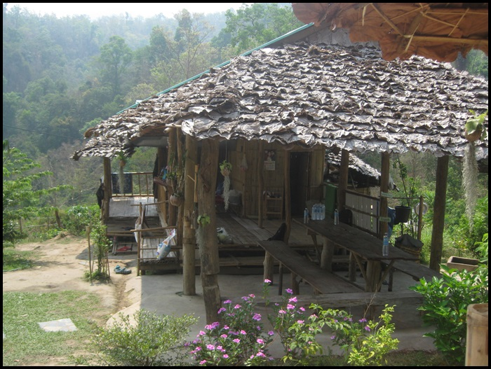 Refuge d'éléphants en Thaïlande