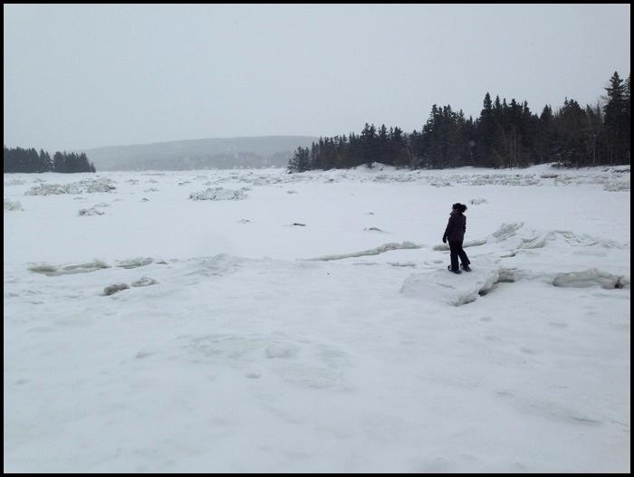 parc national du bic hiver