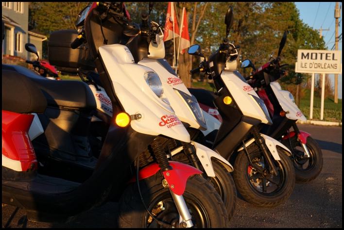 Quebec original tours location de scooter Motel île d'Orléans