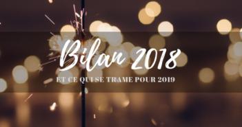 Bilan 2018 blogue voyage