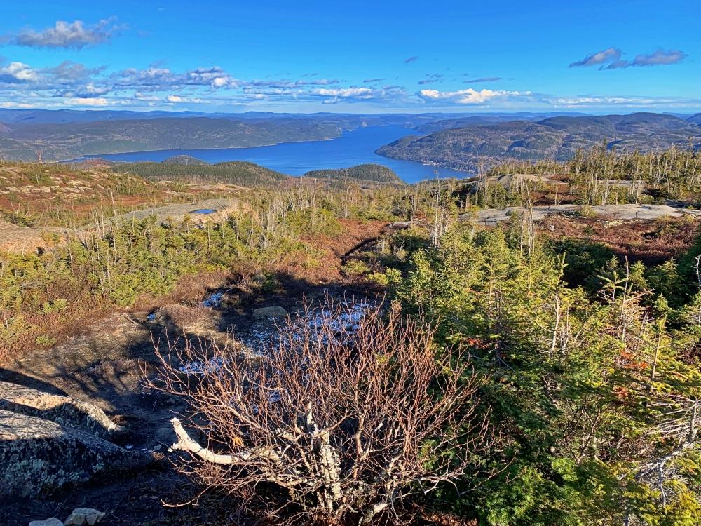 sommet de la montagne blanche au Saguenay en automne